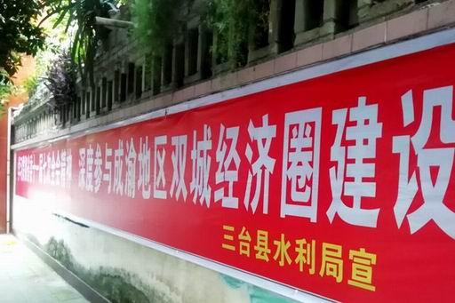 三台县水利局学习贯彻四川省委十一届七次全会  (8).jpg